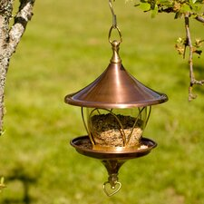 Daffodil Bird Feeder