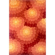 New Wave Orange Rug