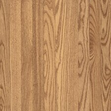 "Dundee Plank 3-1/4"" Solid Red Oak Flooring in Natural"