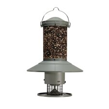 AutoFeeder Bird Feeder