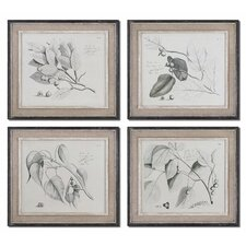 "Sepia Leaf Study by Grace Feyock Wall Art - 21"" x 24"" (Set of 4)"