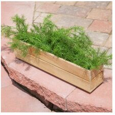 Rectangular Window Box Planter