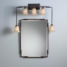 Silverton Mirror in Tannery Bronze