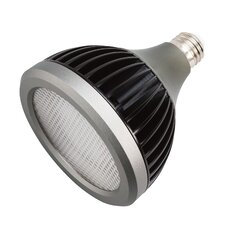 Landscape LED Light Bulb