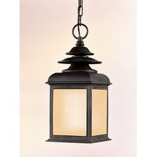 Adams 1 Light Hanging Lantern