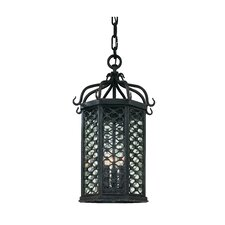 Los Olivos 1 Light Outdoor Large Hanging Lanterm