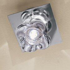 Primula 1 Light Ceiling Light