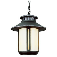 Outdoor 2 Light Hanging Lantern with Glass
