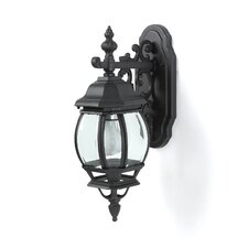 Outdoor 1 Light Wall Lantern