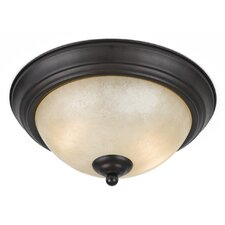 Value Series 2 Light Flush Mount