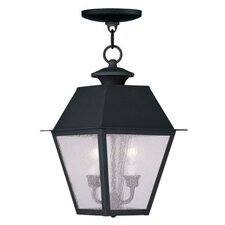 Mansfield 2 Light Outdoor Hanging Lantern