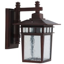 Dante 1 Light Outdoor Wall Lantern