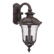 Tori 2 Light Outdoor Wall Lantern