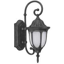 Merili 1 Light Outdoor Wall Lantern