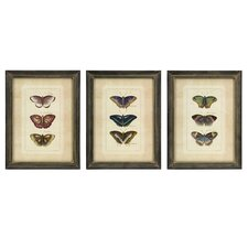 Butterfly Collection Wall Art (Set of 3)