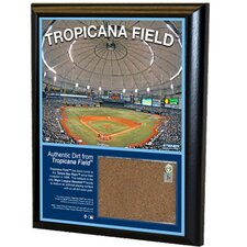 "Tropicana Field 8"" x 10"" Game Used Dirt Plaque"