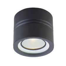 Entity 1 Light Flush Mount