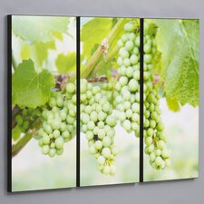"Three Piece Green Vineyard Grapes Laminated Framed Wall Art Set - 36"" x 50"""