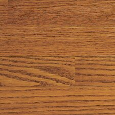 "Congress 3-1/4"" Solid Hardwood Red Oak Flooring in Fawn"