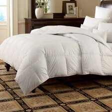 LOGANA Batiste Firm 800 White Goose Down Pillow