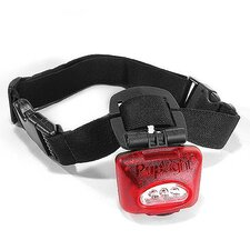 Lighted Dog Collar in Red