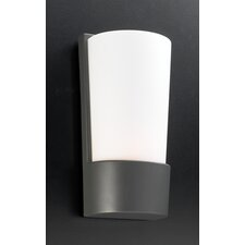 Chimera 1 Light Outdoor Wall Lantern