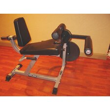 Leg Extension / Curl Machine in Pewter
