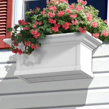 Yorkshire Window Box