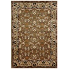 Aaryan Brown/Beige Rug