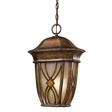 Aston Court 1 Light Outdoor Hanging Lantern