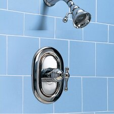 Enfield Diverter Bath/Shower Faucet Trim Kit with Metal Lever Handle and EverClean