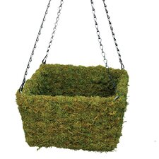 Square Moss Hanging Basket