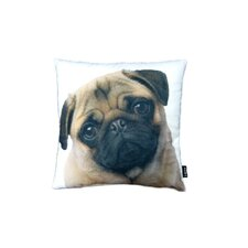 Stella Pug Pillow