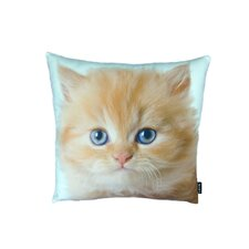 Persian Cat Pillow