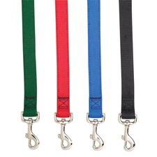 Double Layer Classic Dog Leash