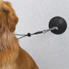 Dog  Suction Cup