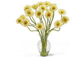 Decorating Your Home with Daisy Accents